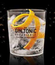 gin&tonic-peralada