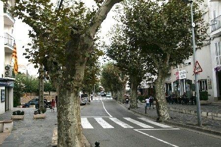 cadaques-arbres