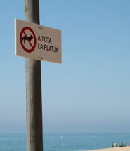 prohibit-gossos-platja
